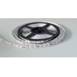 Coostant current led ribbon 96pcs/m white DC24V IP33